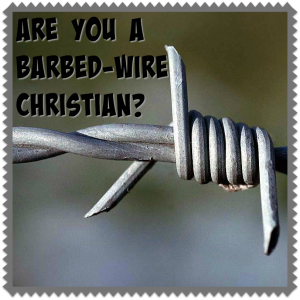 12i-Barbed wire