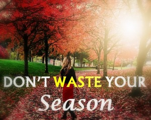 season-dont-waste-your-season-life-seasons-seasons-with-god-embrace-your-season1