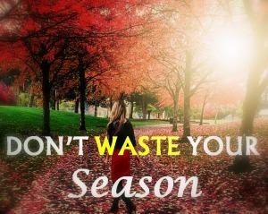 season-dont-waste-your-season-life-seasons-seasons-with-god-embrace-your-season1