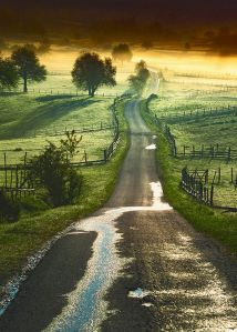 14b05fd150799debee927269bfc9dffa--country-roads-country-life